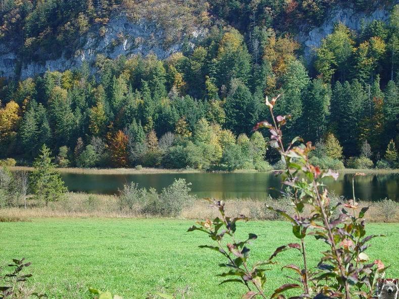 Le lac d'Etival (39) 0004