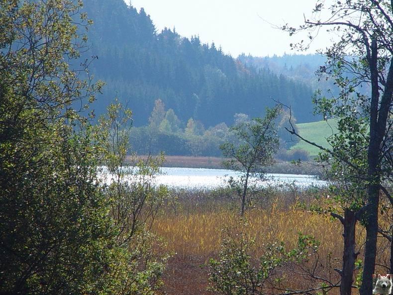 Le lac d'Etival (39) 0006