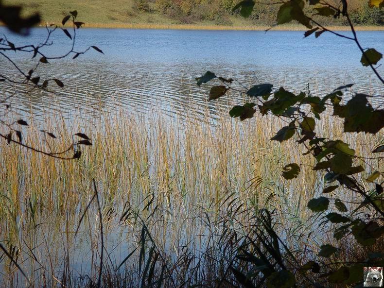 Le lac d'Etival (39) 0008