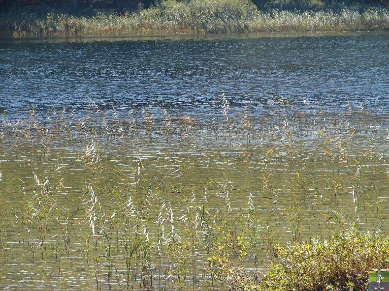 Le lac d'Etival (39) 0008b