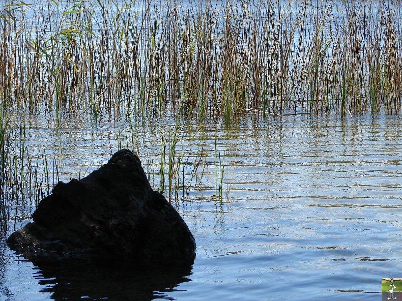 Le lac d'Etival (39) 0012c