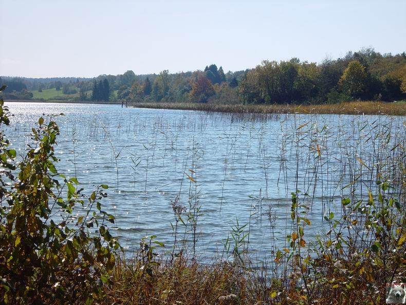 Le lac d'Etival (39) 0013