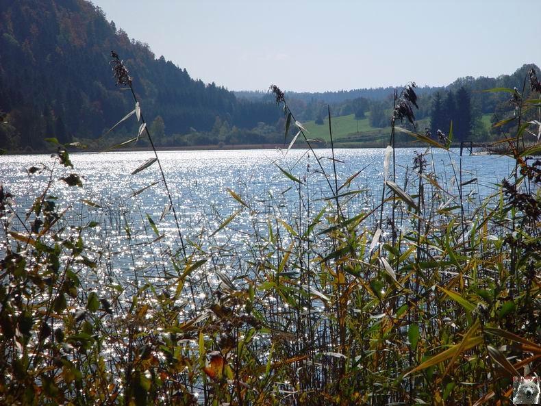 Le lac d'Etival (39) 0015