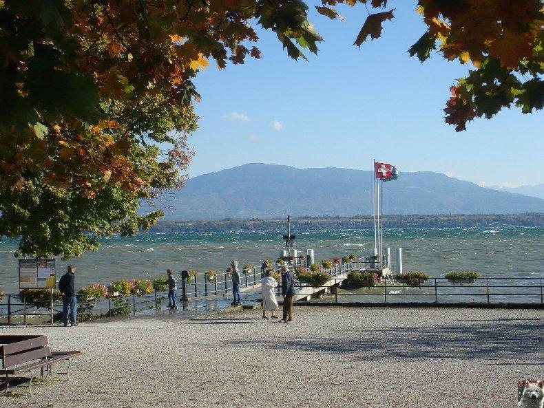 Tempête sur le Lac Léman - Copet (VD) - 20/10/2007 0001