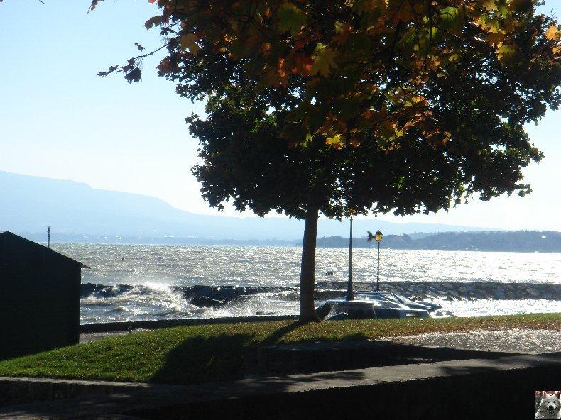 Tempête sur le Lac Léman - Copet (VD) - 20/10/2007 0003