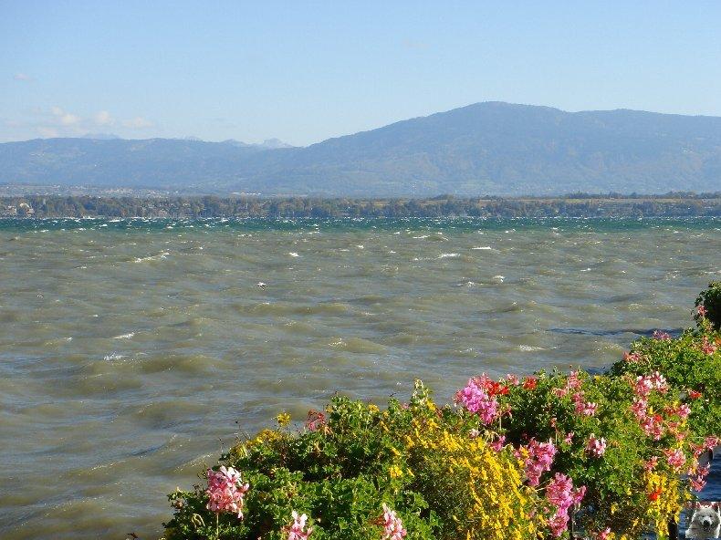Tempête sur le Lac Léman - Copet (VD) - 20/10/2007 0009