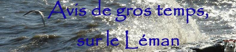 Tempête sur le Lac Léman - Copet (VD) - 20/10/2007 Logo