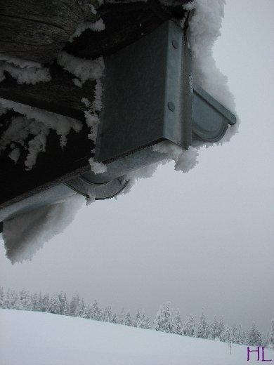 Balade dans le Grand Nord au départ de Menthières - 16/02/2010 0002