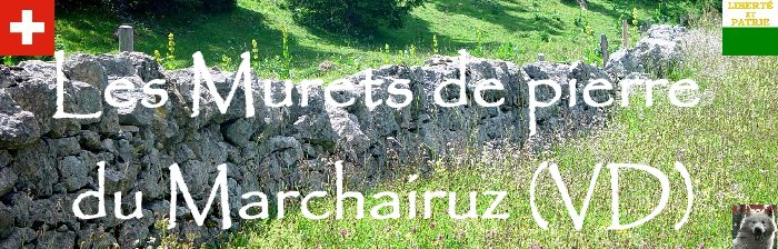 Les murets du Marchairuz (VD) Logo