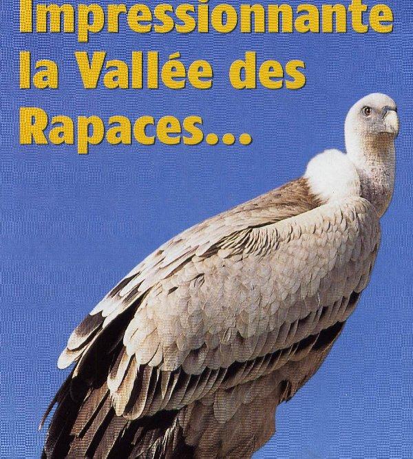 Quelques pensionnaires du Parc ornithologique des Dombes (01) 0037