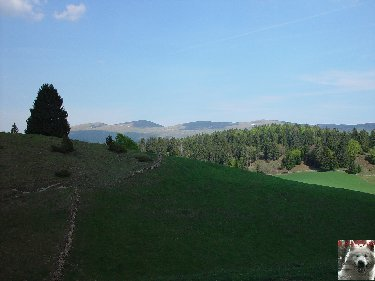 A la découverte de quelques paysages hauts-jurassiens 0022