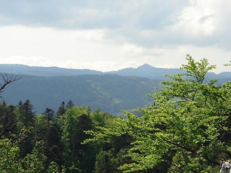 A la découverte de quelques paysages hauts-jurassiens 0023