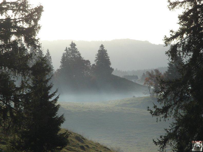 A la découverte de quelques paysages hauts-jurassiens 0056