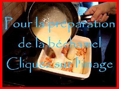 Quenelle de brochet aux queues d'écrevisses - 19/02/2007 V01