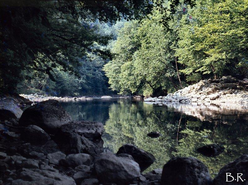 Le Ravin Mathieu, la Rivière d'Ain 0001