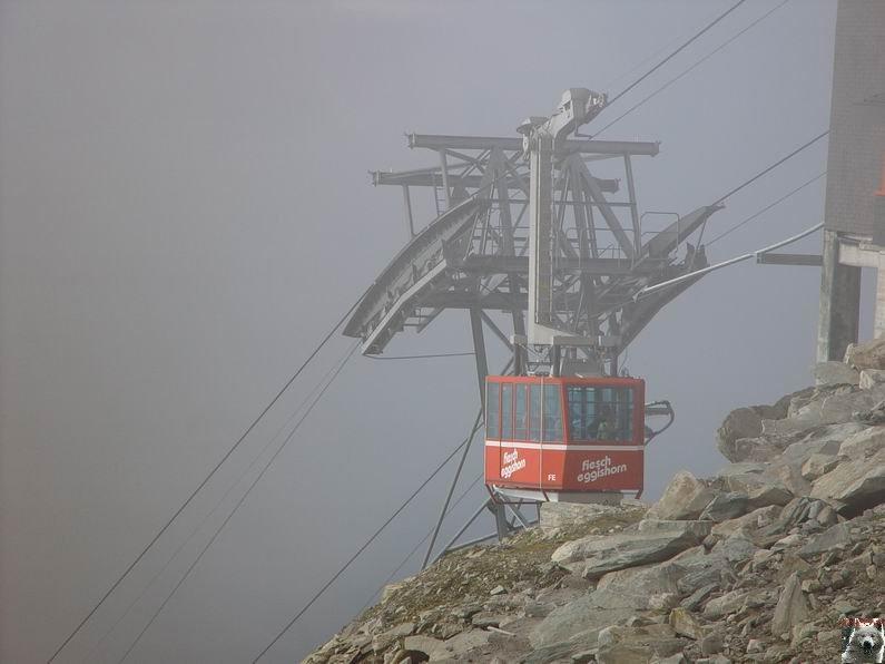Dans le Valais - le plus grand glacier alpin - Aletsch 0012