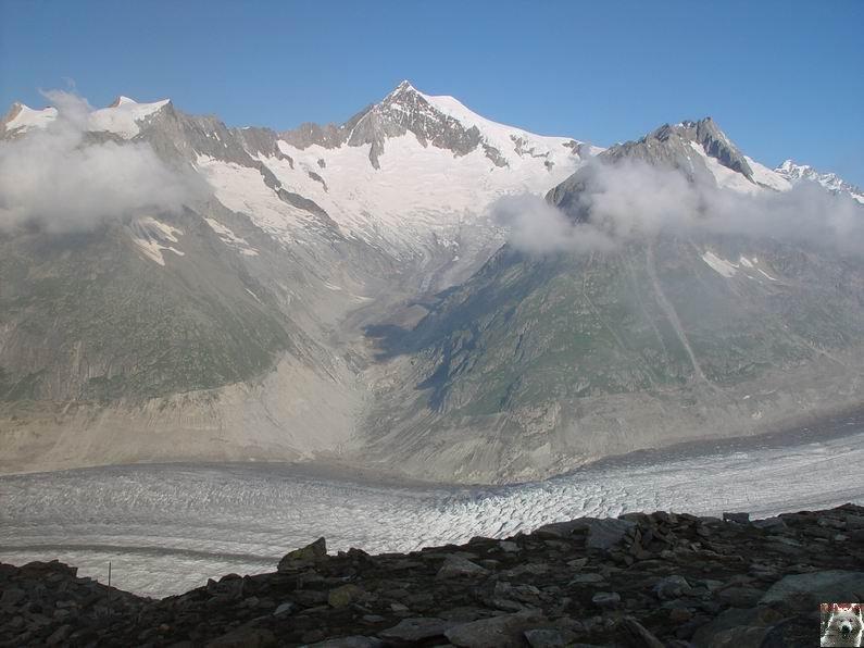 Dans le Valais - le plus grand glacier alpin - Aletsch 0017