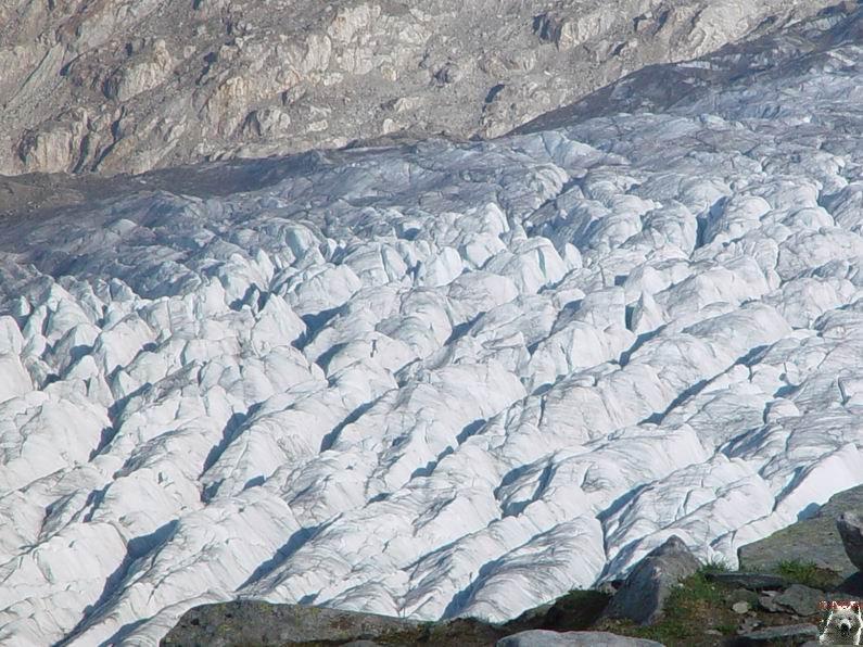 Dans le Valais - le plus grand glacier alpin - Aletsch 0022