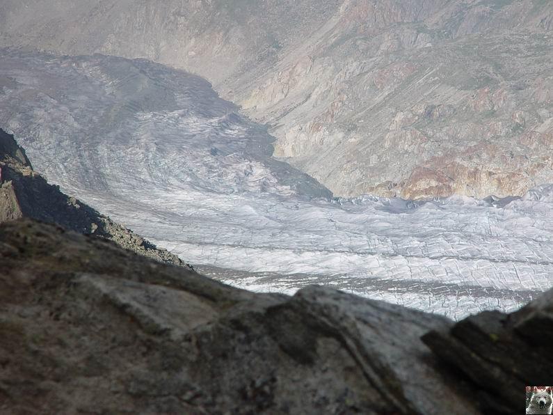 Dans le Valais - le plus grand glacier alpin - Aletsch 0026