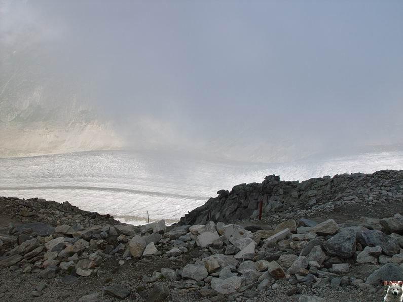Dans le Valais - le plus grand glacier alpin - Aletsch 0027