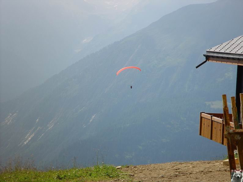 Dans le Valais - le plus grand glacier alpin - Aletsch 0030