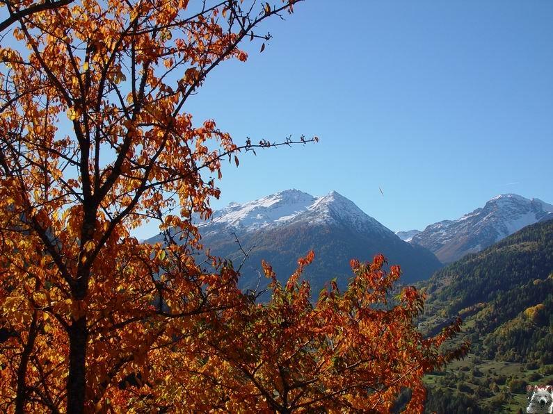 Le Val d'Annivier - Suisse - VS - 15 octobre 2005   0012