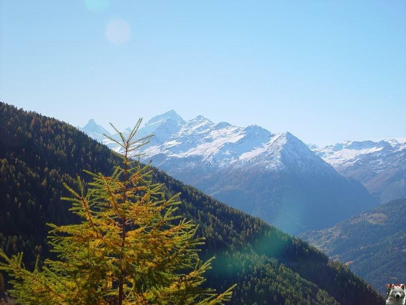 Le Val d'Annivier - Suisse - VS - 15 octobre 2005   0017