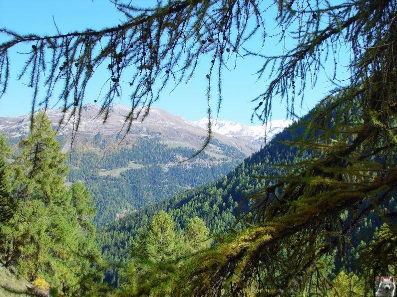 Le Val d'Annivier - Suisse - VS - 15 octobre 2005   0029