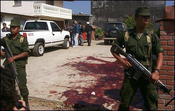narcotraficantes Devastar pueblos indígena Ensenada