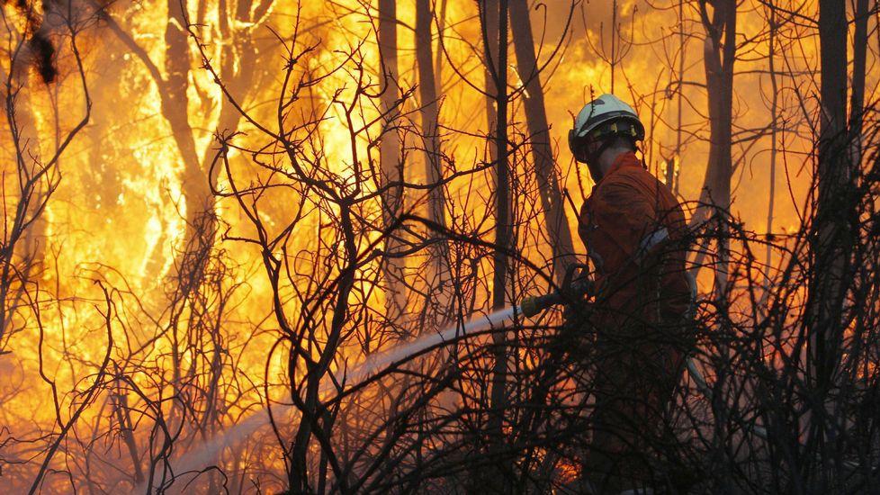 Incendios forestales. Aplicación España en llamas. - Página 2 B27M2095