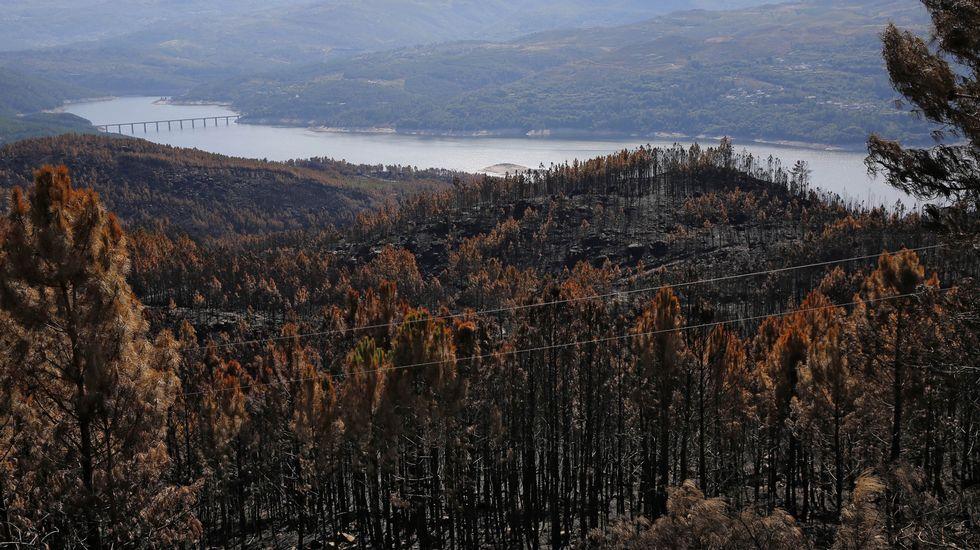Galiza, incendios: La Xunta admite que en As Fragas do Eume han ardido 750 hectáreas.  OY30C1F1_1