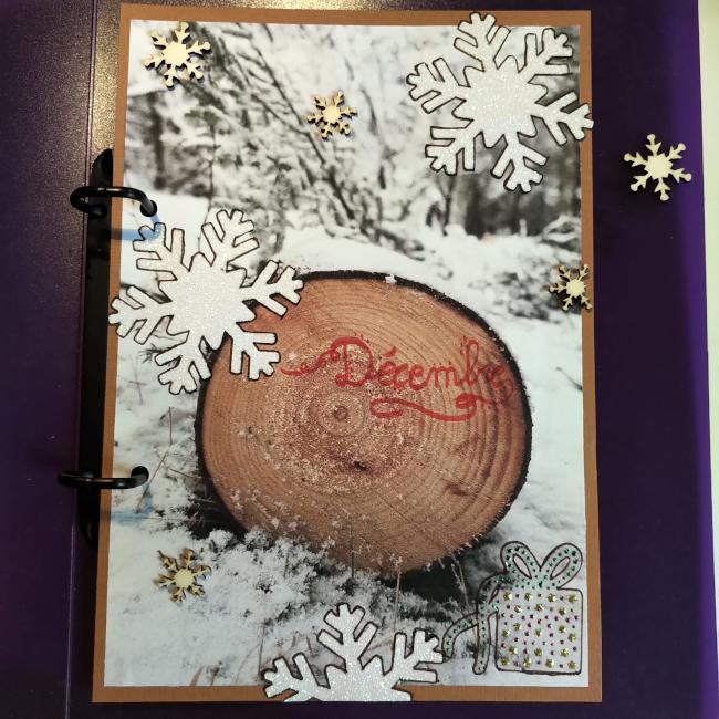 Bannière de décembre - Page 2 Bourgeon-creatif_Banniere-du-Poulailler_decembre-2020