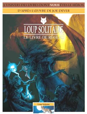 LOUP SOLITAIRE - LONE WOLF en Francais (inédit) - Page 3 Loup-solitaire-brouillon