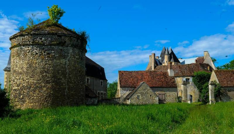 un château - ajonc - 12 juin 2016 trouvé par snoopie Le-chateau-de-meauce-a-saincaize_2123177