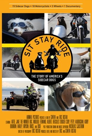 Documentaire Sit Stay Ride Documentaire-chiens-sidecar_hd
