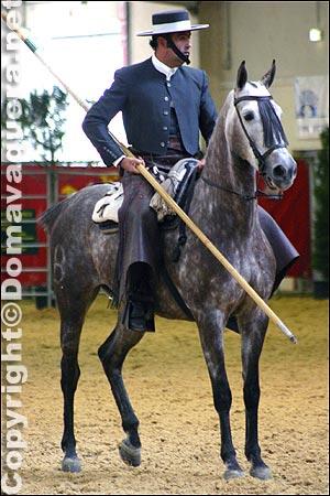 les équitations de travail et de traditions Vaquero-espagne_03