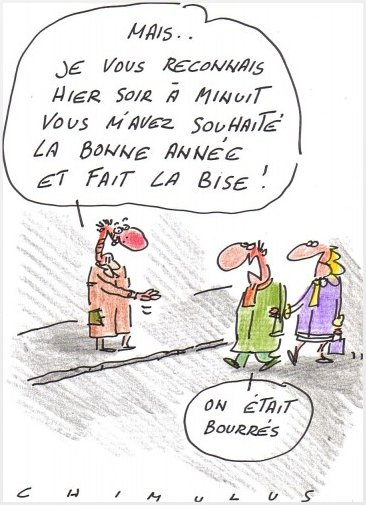 Humour festif (Dessins & blagues imagés)  Chimulus-dessin-bonnes-resolutions