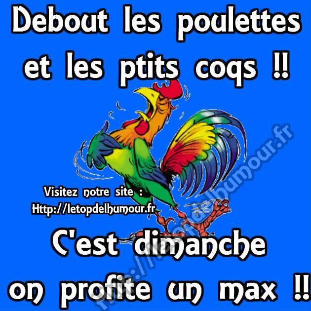 Dimanche 13 janvier  Dimanche-poulet-coq-debout-humour