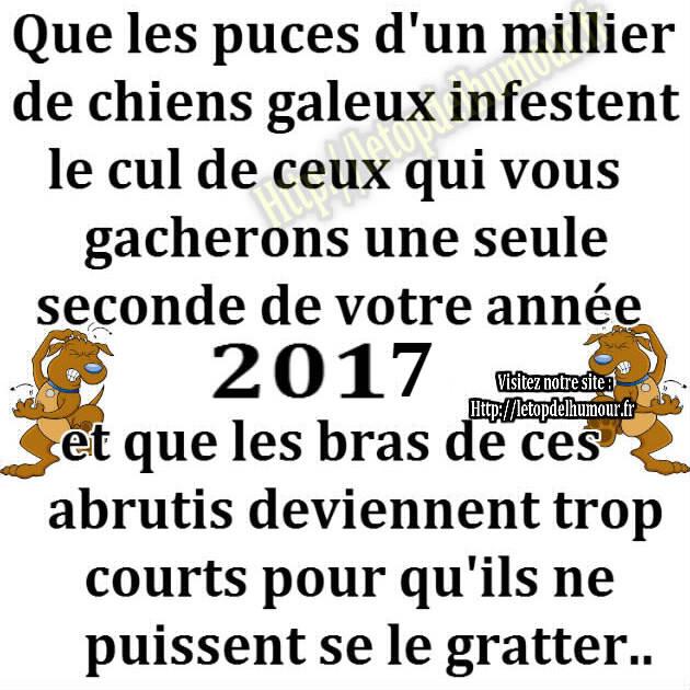 Vox Populi - Page 2 Chien-puce-gratter-dod-bras-2017-humour-blague