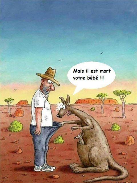 [Jeu] Association d'images - Page 18 Homme-bebe-kangourou-culotte-mort-humour-drole-