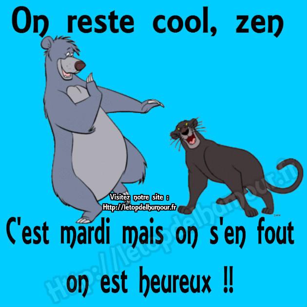 mardi 7 août Zen-cool-ours-panthere-heureux-mardi-humour-drole-