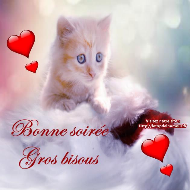 Discussion sur l' Etoile de TF1 du 28 novembre 2017   - Page 22 Bonne-soiree-bisous-chat-nuage-coeurs-rouges