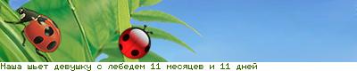 Совместный процесс: ЗР ЧМ-008 Девушка с лебедем. 72906108