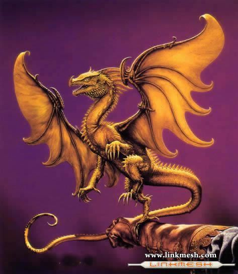 Solamente Impresionantes Dragones Espectaculo_dragon