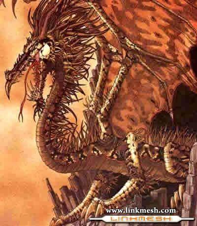 Solamente Impresionantes Dragones Furioso