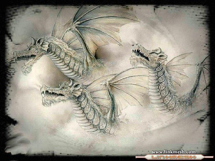 Solamente Impresionantes Dragones Insignia_de_dragones