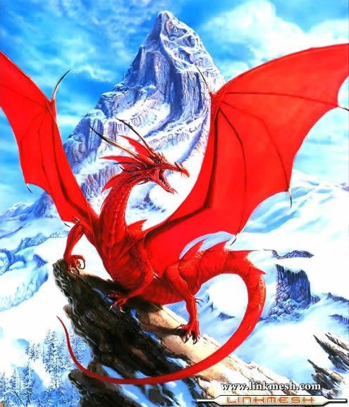 Solamente Impresionantes Dragones La_furia_del_dragon