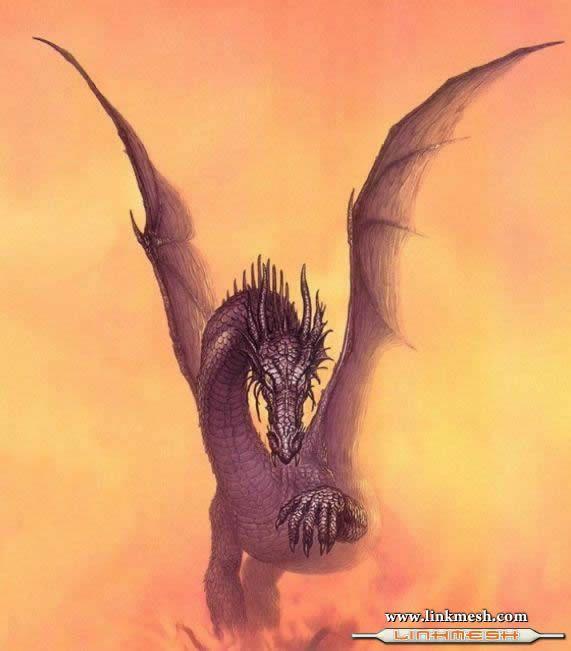 Solamente Impresionantes Dragones Niebla_dragon