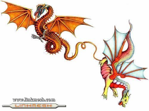Solamente Impresionantes Dragones Pequenos_dragones
