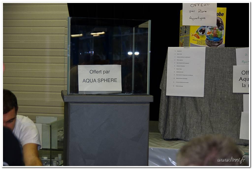 Bourse aquariophile Nantaise le 27 octobre 2013, photos Bourse%20aqua44%202013%2079